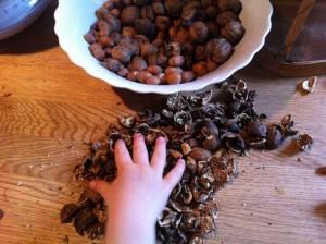 Si vous avez des noix entières, cassez-les et frottez-les dans un torchon.