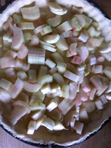 Disposez vos tronçons de tige de rhubarbe.